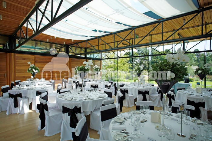 1246 weddings_3